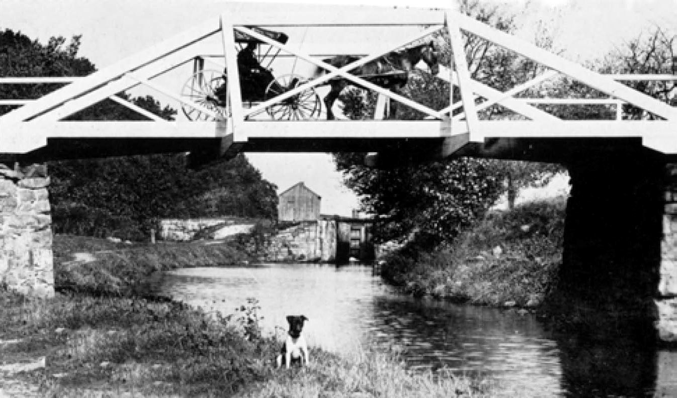 A dog sits under a bridge over the Morris Canal